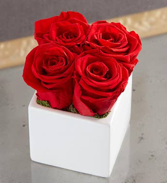 Preserved Red Roses by Luxe Bloom® - Small