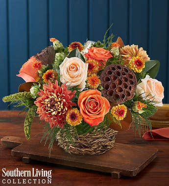 Woodland Birds Nest by Southern Living