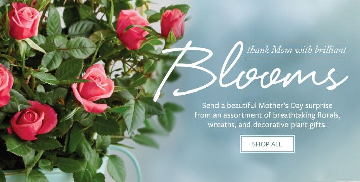 Thank mom with brilliant blooms. SHOP ALL