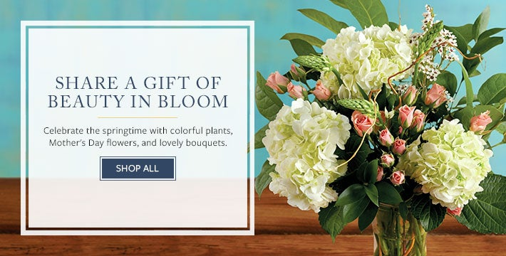 SHARE A GIFT OF BEAUTY IN BLOOM Celebrate the springtime with colorful plants, Mother's Day flowers, and lovely bouquets. SHOP ALL