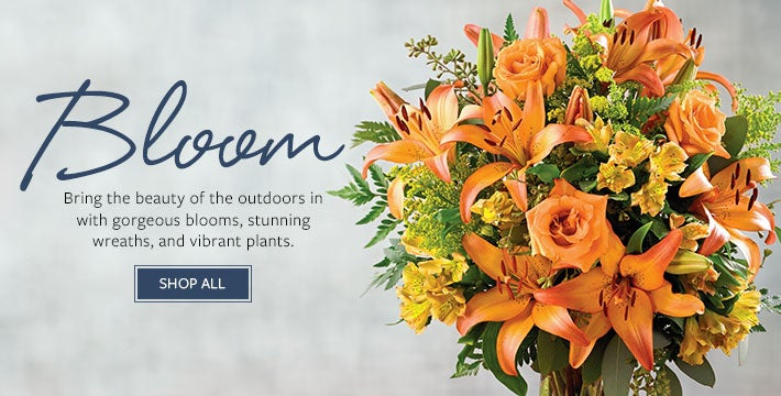 Bloom. Bring the beauty of the outdoors in with gorgeous blooms, stunning wreaths, and vibrant plants.  SHOP ALL