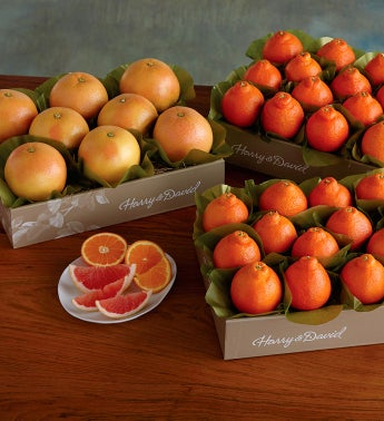 HoneyBells and Red Grapefruit - Three Trays
