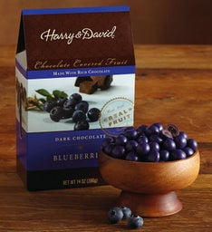 Dark Chocolate Blueberries (14 oz)