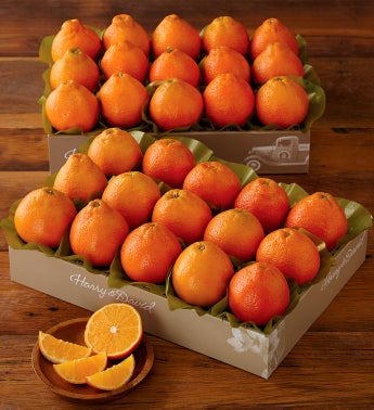 HoneyBells - Two Trays