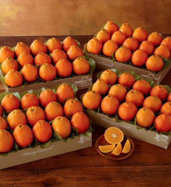 HoneyBells - Four Trays