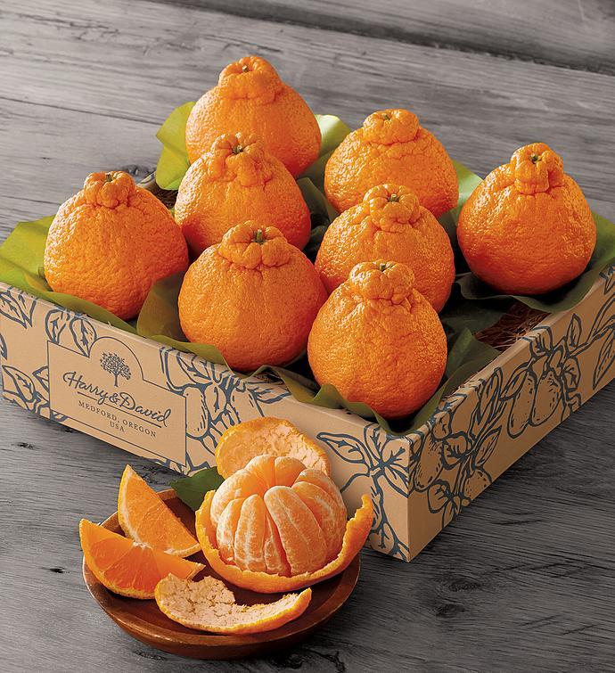 Sumo Citrus Mandarins