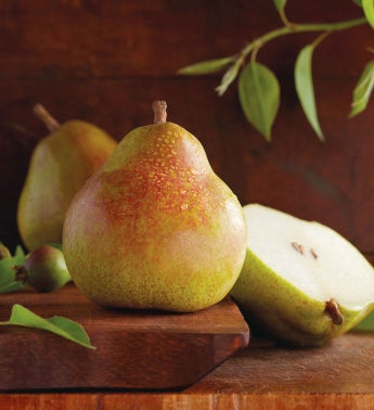 Honorary Orchardist Royal Riviera® Pears