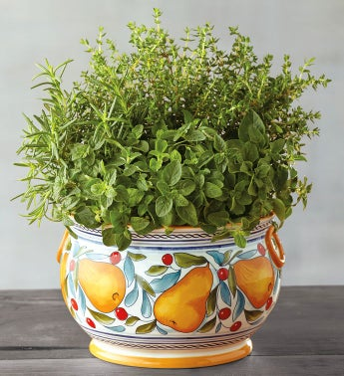 Cucina Italian Herbs