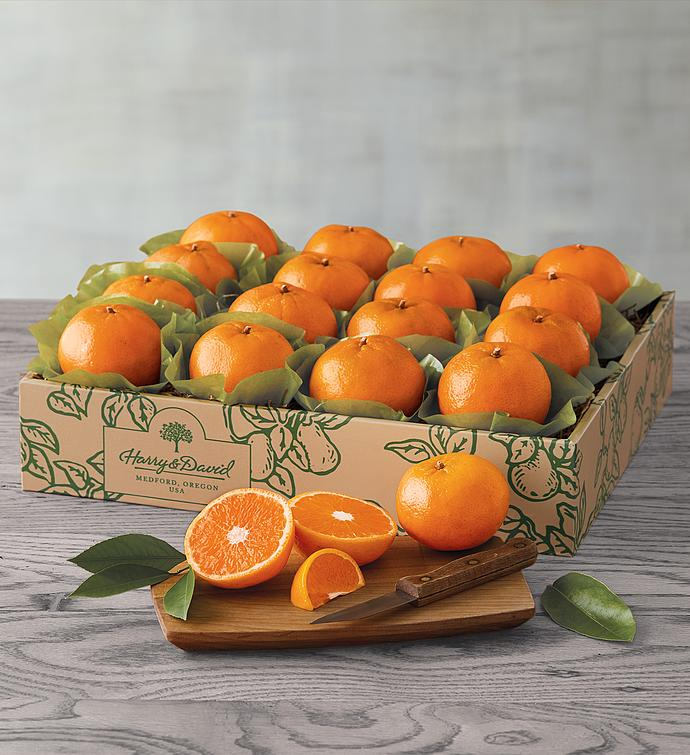 SolZest Mandarin Oranges