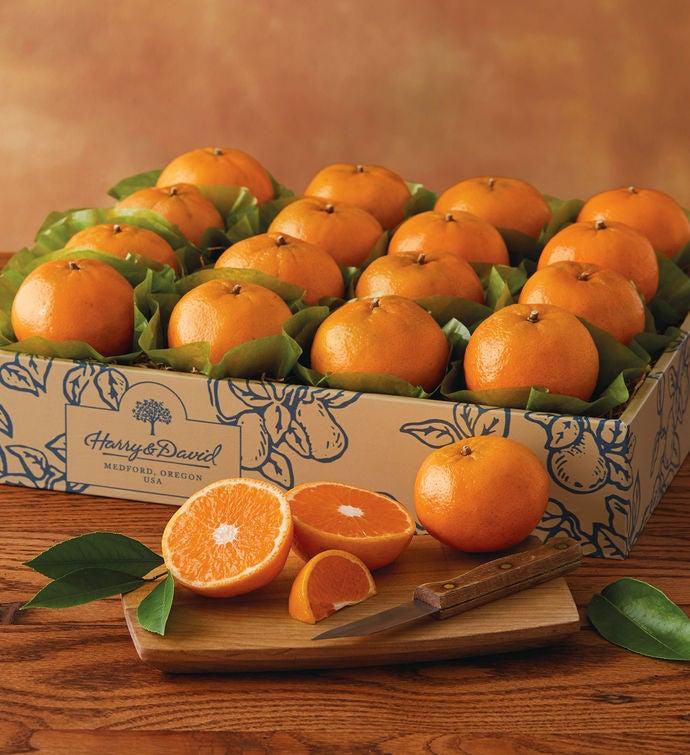 SolZest® Mandarin Oranges by Harry & David
