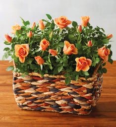 Autumn Rose Centerpiece