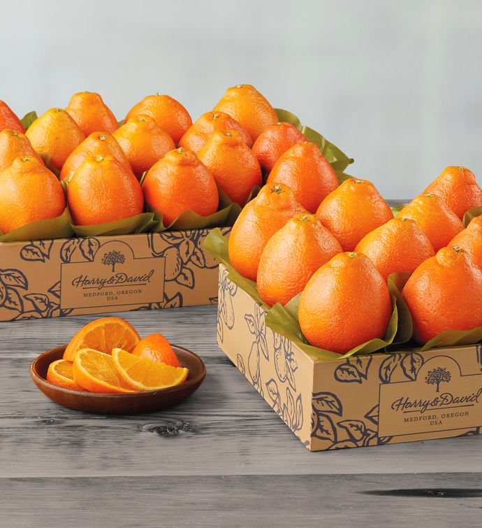 Western HoneyBells  Two Trays