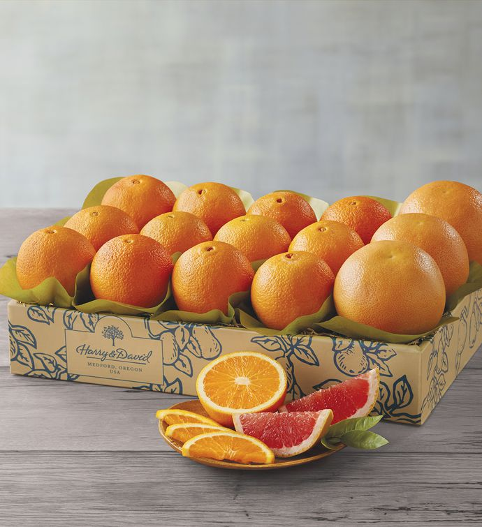 Navel Oranges and Grapefruit  One Tray