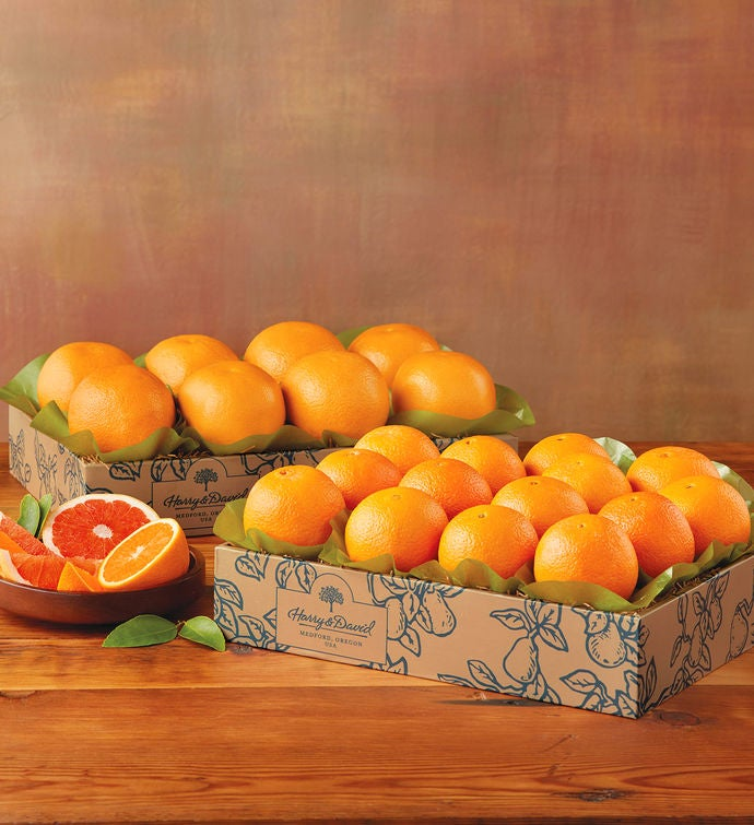 Navel Oranges and Grapefruit - Two Trays