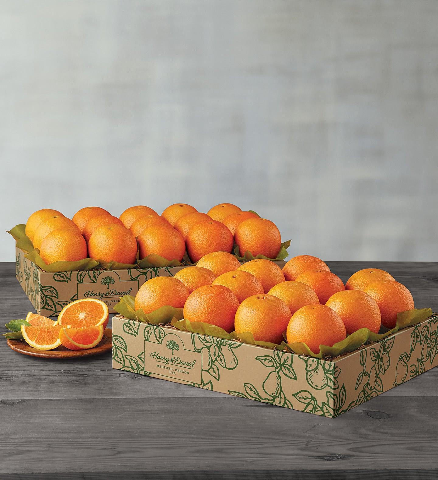 Navel Oranges  Two Trays