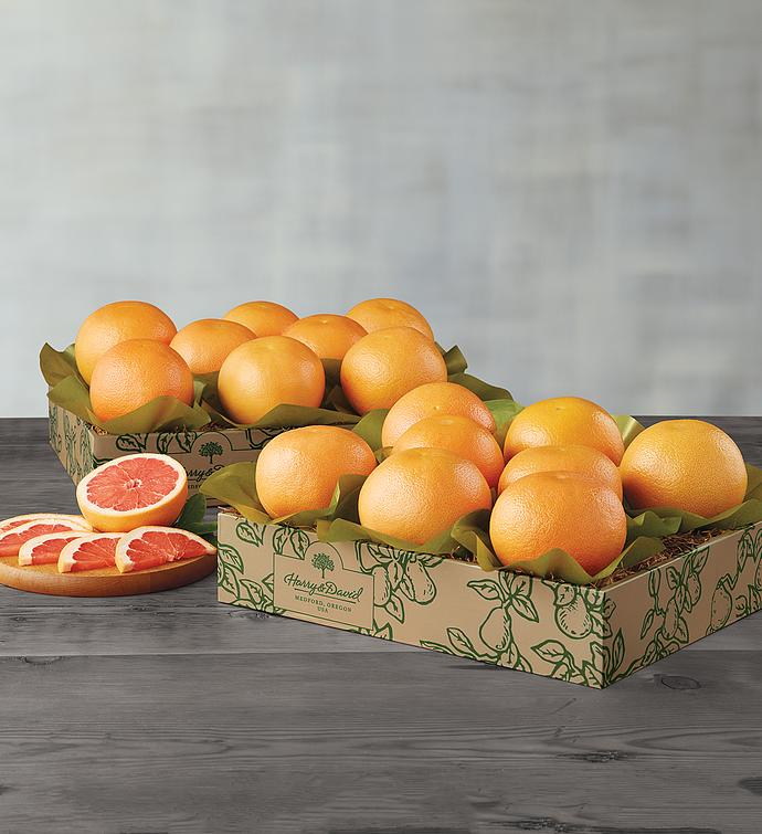 Red Grapefruit  Two Trays