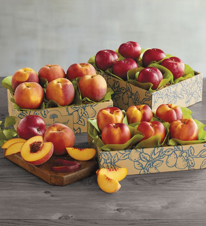 Triple Treattrade Deluxe Summer Fruit