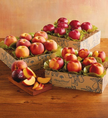 Triple Treat™ Grand Summer Fruit
