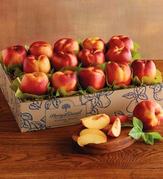 Juicy Giant174 Nectarines