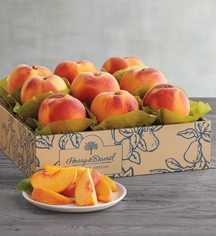 Oregold Peaches