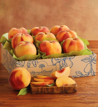 Oregold® Forty-Niner Peaches