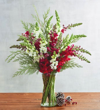 Holiday Snapdragon Bouquet
