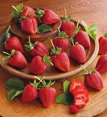 Giant Strawberries