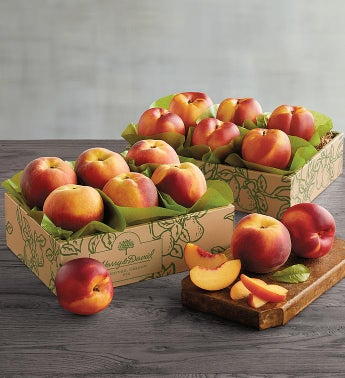 Oregold® Peaches and Nectarines