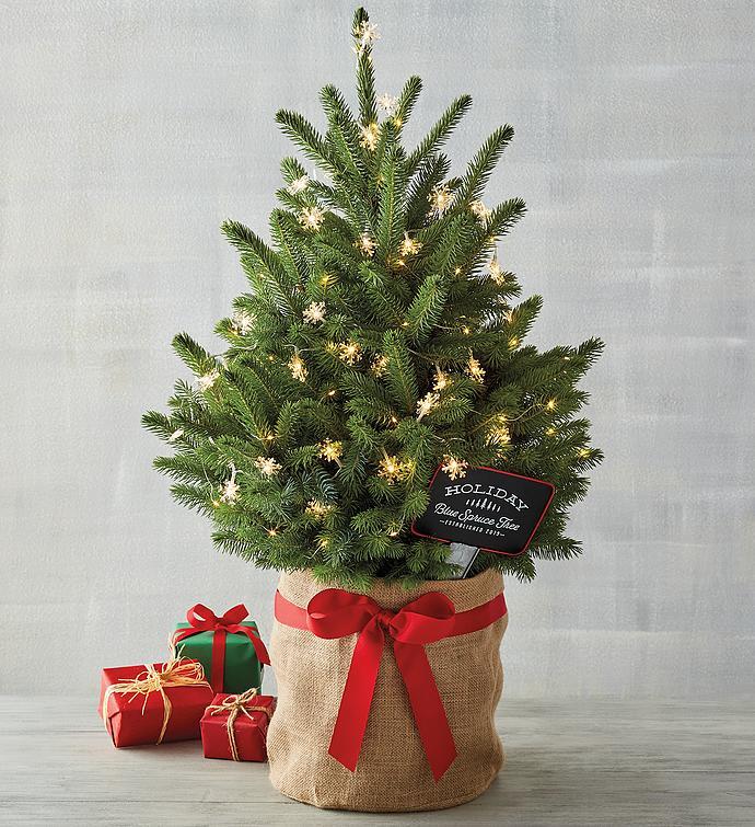 Make a Memory Christmas Tree