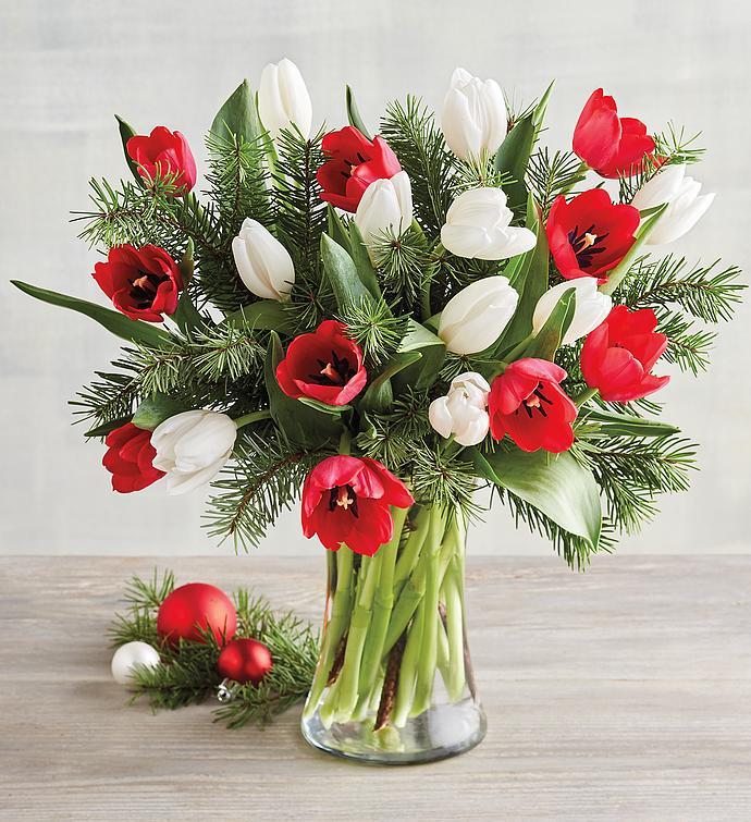 Holly Jolly Tulips