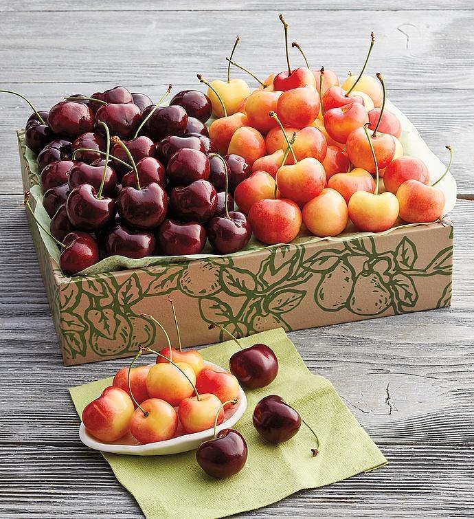 Rainier and PlumpSweet Cherries