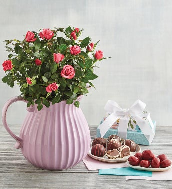 Harry & David Pink Mini Rose Pitcher Gift