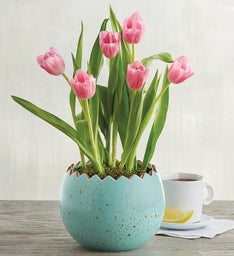 Pink Tulips in Easter Egg Planter