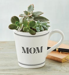 Mothers Day Mug with Succulents
