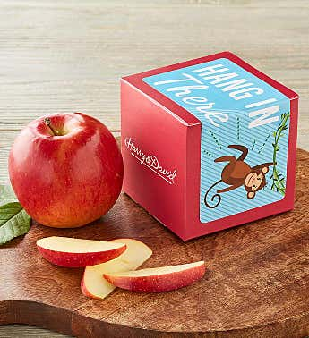 """Hang in There"" Single Apple Gift"
