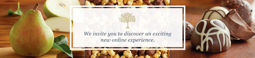We invite you to discover an exciting new online experience
