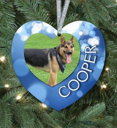 Our Pet Heart Ornament
